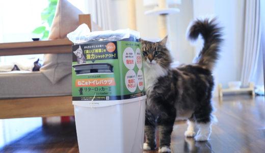 猫のトイレのゴミ箱どうしてる?手軽で臭わないのはこれ!