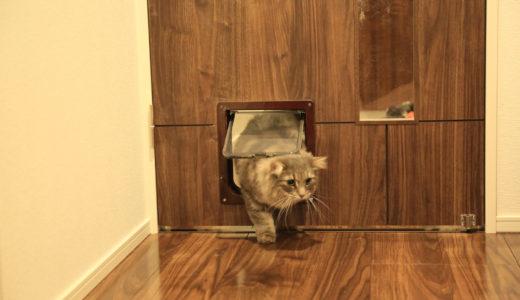 猫ドア自作!意外と簡単!